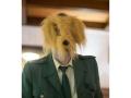 Undercover Spürhund